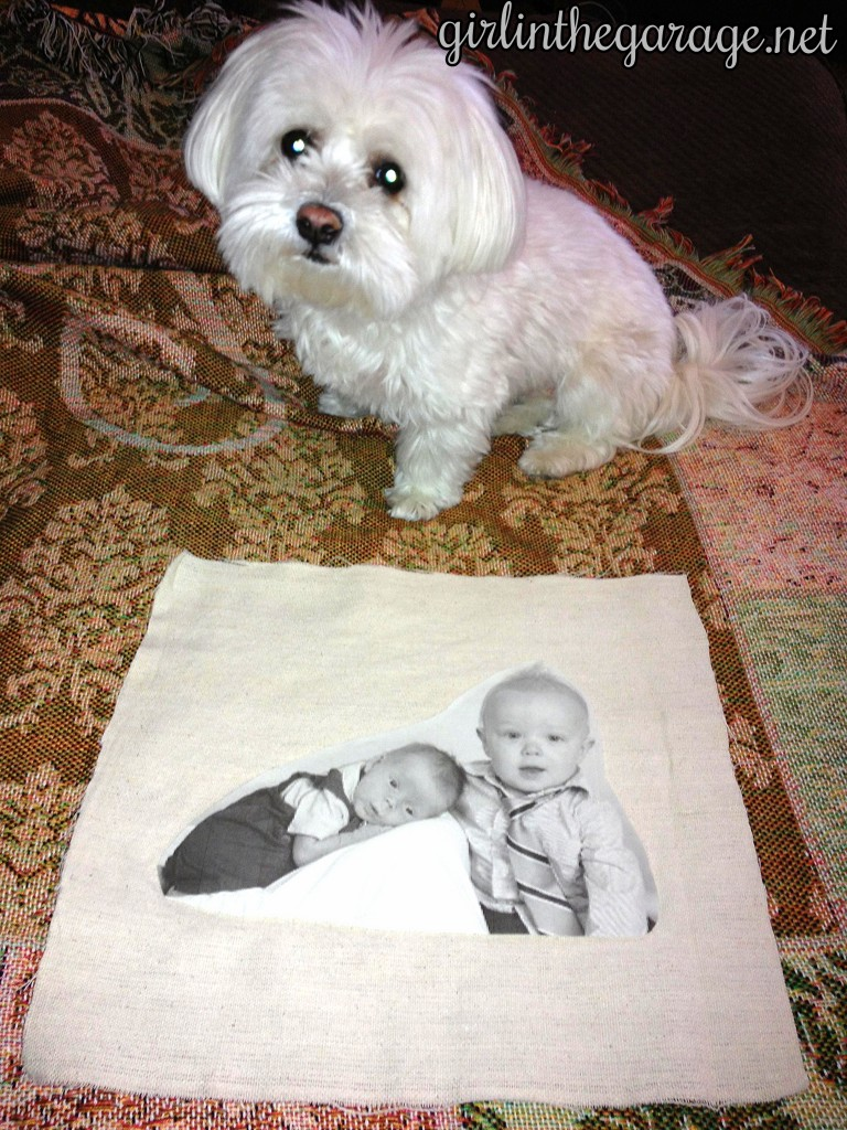 Corrected cut image for pillow. By Girl in the Garage
