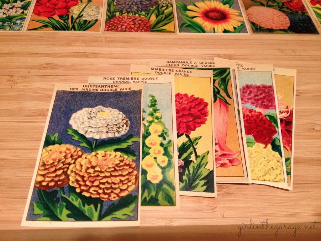 Vintage French flower seed labels used for decoupage. Girl in the Garage