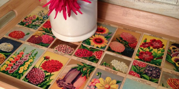 French Flower Seed Tray