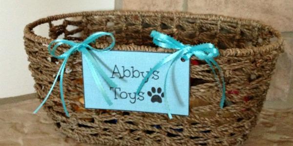 Basket for Dog Toys