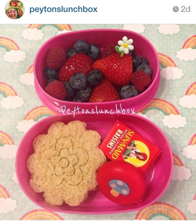 Bento lunch via Peyton's Lunchbox on Instagram