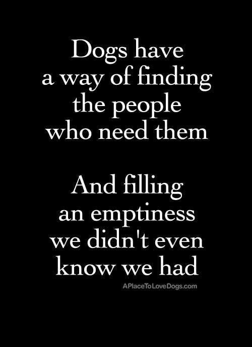 Dogs.