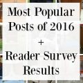 most-popular-posts-results-2016-300